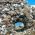 Port Hole Window by Paula OMalley