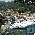 Port Of Portofino by Christine Huwer