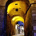 Porta Alfonsina by Fabrizio Troiani