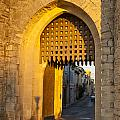 Portcullis Aigues-mortes  Languedoc-roussillon France by Colin and Linda McKie