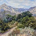 Porter Trail by Patricia  Cluche