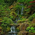 Portland Japanese Gardens by Jacqui Boonstra