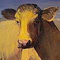 Portrait Of A Cow by Carolyn Doe
