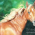 Portrait Of A Palomino by Carrie L Lewis