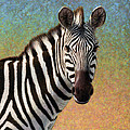 Portrait Of A Zebra - Square by James W Johnson