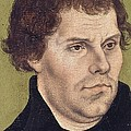Portrait Of Martin Luther Aged 43 by Lucas Cranach