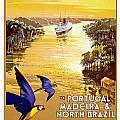 Portugal Vintage Travel Poster by Jon Neidert