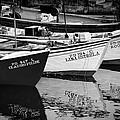 Portuguese Fishing Boats by Eduardo Tavares