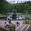 Postcard From Central Park by Madeline Ellis