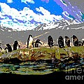 Posterized Penguins Line Dance by Marian Bell