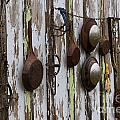 Pots And Pans by Ashley M Conger