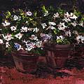 Pots Of Flowers by Terri  Meyer