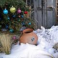 Pottery In Snow At Xmas by Tamara Kulish