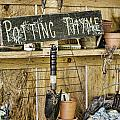 Potting Thyme by Heather Applegate