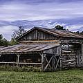 Pottsville Arkansas Historic Log Barn by Betty Denise
