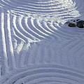 Powder In Zen Two by Feile Case