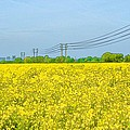 Power Lines In Innsworth by Ron Harpham