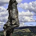 Powis Castle Statuary by Fran Gallogly