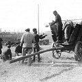 Pows Unload Cabbages For Lunch by Underwood Archives