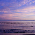 pr 241-Lavender Sunset by Chris Berry