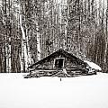 Prairie Homestead Of Alberta by Roxy Hurtubise
