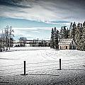 Praire Life In Alberta by Roxy Hurtubise