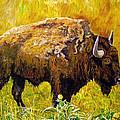 Prairie Companions by Michael Durst