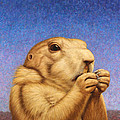 Prairie Dog by James W Johnson