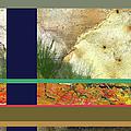 Prairie Grasses Amid The Rocks by Paulette B Wright