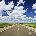 Prairie Highway by Elena Elisseeva