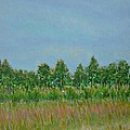 Prairie Morning Light by Gail Kent