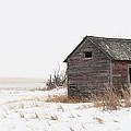 Prairie Silence... by Nina Stavlund