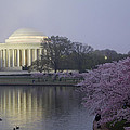 Pre-dawn At The Jefferson Memorial 2 by Leah Palmer