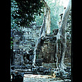 Preah Khan Temple 01 by Rick Piper Photography