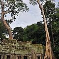 Preah Khantemple At Angkor Wat by Sami Sarkis