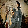 Precious Light by Gothicrow Images