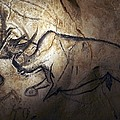 Prehistoric Cave Paintings, Chauvet by Science Photo Library