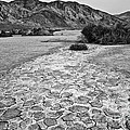 Prehistoric - Clark Dry Lake Located In Anza Borrego Desert State Park In California. by Jamie Pham