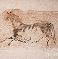 Prehistoric Horse by Roberto Prusso