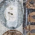 Silken Circles 2 by Carol Leigh