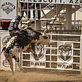 Prescott Az Rodeo by Jon Berghoff
