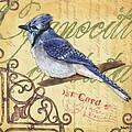 Pretty Bird 4 by Debbie DeWitt