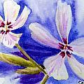 Pretty Flowers by Katherine  Berlin