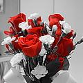 Pretty In Red by Dan Vallo