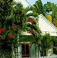 Pretty Key West Florida by Susanne Van Hulst