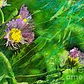 Pretty Little Weeds Photoart by Debbie Portwood