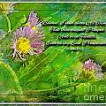 Pretty Little Weeds With Photoart And Verse by Debbie Portwood