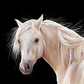 Pretty Palomino Pony Painting by Michelle Wrighton