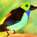 Pretty Paradise Tanager by Renee Michelle Wenker