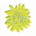 Pretty Sunflower  by Lynn-Marie Gildersleeve